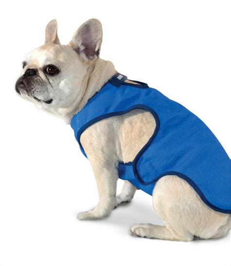 cooling vest for dogs keeping your cool in weather essentially dogs