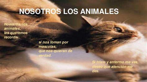 poema de los animales poema de animales