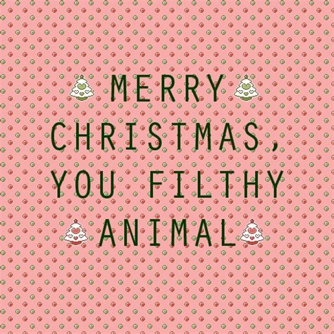 images of merry christmas you filthy animal 8tracks radio merry christmas you filthy animal 12