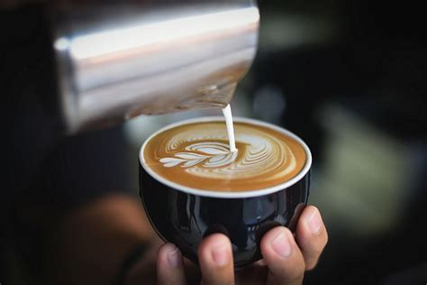 the best latte machine make latte at home buying guide