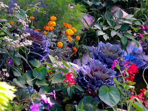 piazza co di fiori fiori e piante oltre 47 mila imprese in italia con i