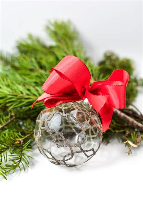 images background backdrop xmas holiday celebration tree branch seasonal