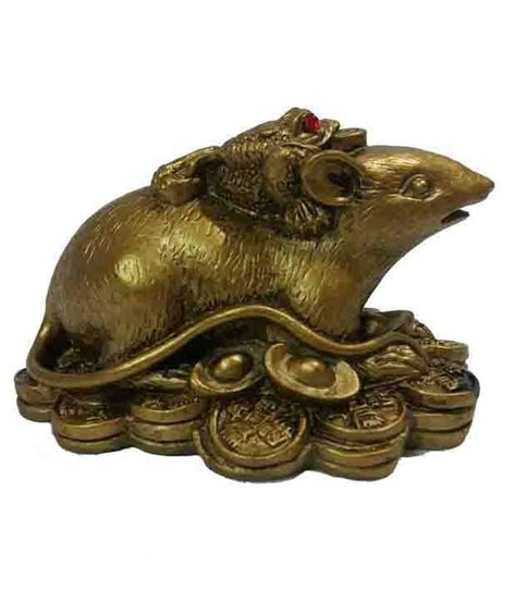 the vs the south wealth luck and fortune on money frog on mongoose enhance fortune and wealth