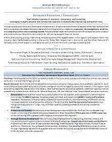 resume summary sles for it professionals resume verbs customers service