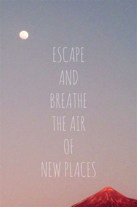 travel animal quotes images  pinterest