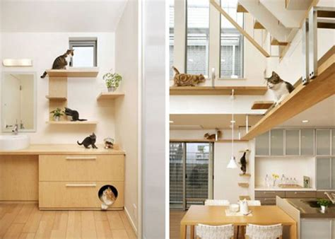 modern cat tree type choose ideal and modern cat tree choose ideal and modern cat tree invisibleinkradio home