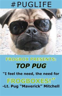 living the pug frogbox pug on pug