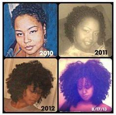stages of natural hair if hair could talk on pinterest afro natural hair