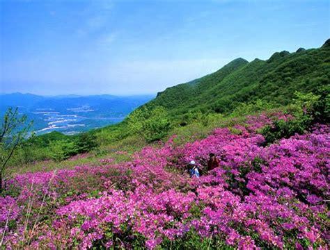 tempat wisata  korea selatan part ii eunheeverlasting