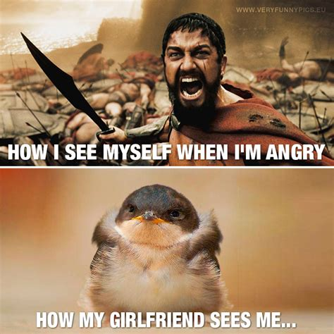 Funny Angry Memes - my anger is a matter of perspective very funny pics