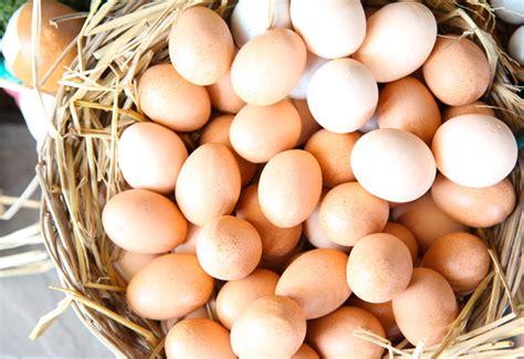 alimenti vitamine b i 6 cibi pi 249 ricchi di vitamine b casa di vita