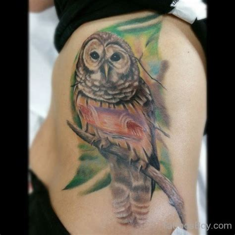owl tattoo price awesome owl tattoo design tattoo designs tattoo pictures