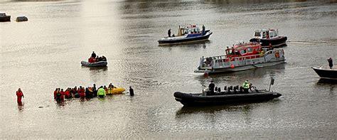 thames river rescue river thames whale wikipedia