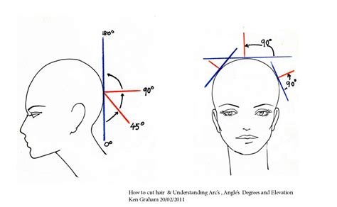 hair cutting angles diagram haircut buscar con google corte pinterest