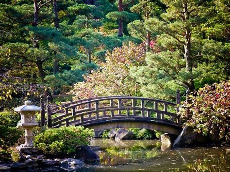 65 best images about anderson japanese gardens rockford