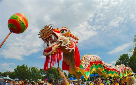 dragon boat festival 2017 queens colorado dragon boat festival and 20 other things to do in