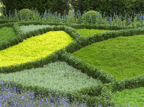 ideas for groundcover alternatives to grass landscaping