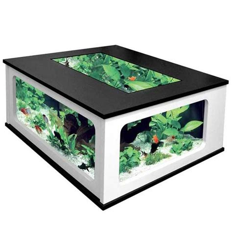 Fish Tank Coffee Table Cheap 25 Best Ideas About Cheap Fish Tanks On Tank Stand Fack And Millionaire Houses