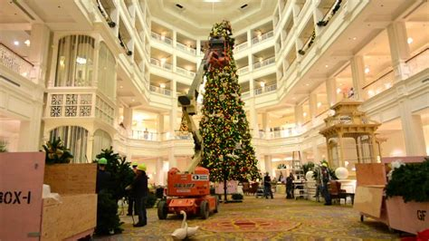 grand floridian christmas tree disney s grand floridian tree time lapse