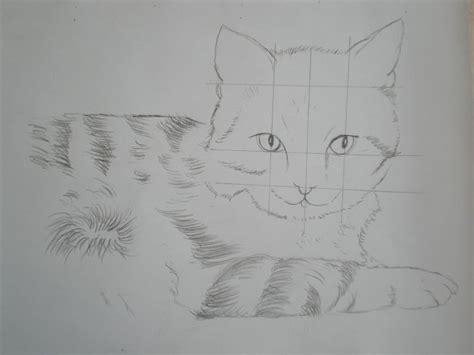 Portrait De Chat Au Crayons De Couleur Domi Dessins Et Modele Dessin Chaton L