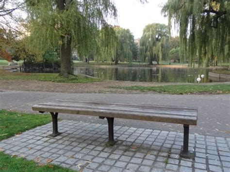 good will hunting bench good will hunting bench tv movies music art