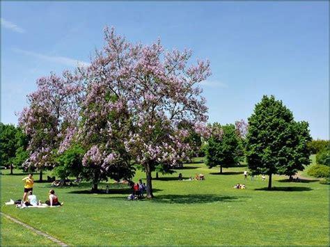 giardino della sigurtà parco sigurt 224 una gita a gita al parco sigurt 224