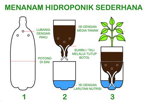 Tips Hidroponik Alat Hidroponik tips dan cara membuat tanaman hidroponik dari botol bekas