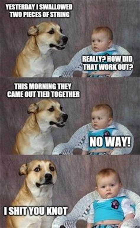 Gay Dog Meme - 1000 ideas about dad jokes on pinterest bad dad jokes