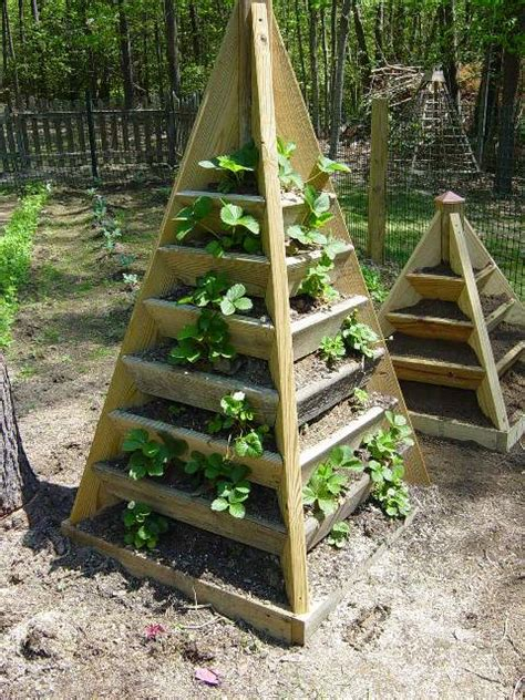 Strawberry Planter Plans how to build a pyramid strawberry planter diy plans