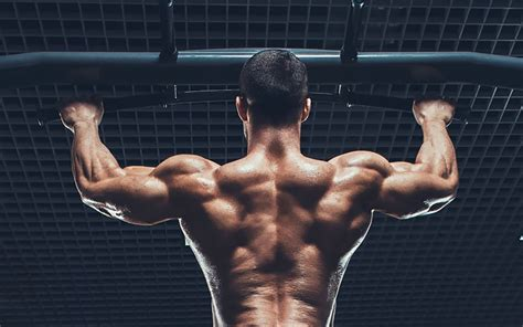 home body the complete guide to body weight workouts onnit academy