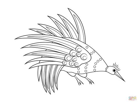 rainbow bowerbird aboriginal art coloring page free