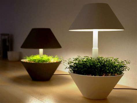 eco gadgets lightpot  indoor plants