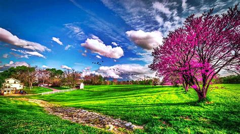 spring house farm hd wallpapeer free wallpapers downloads