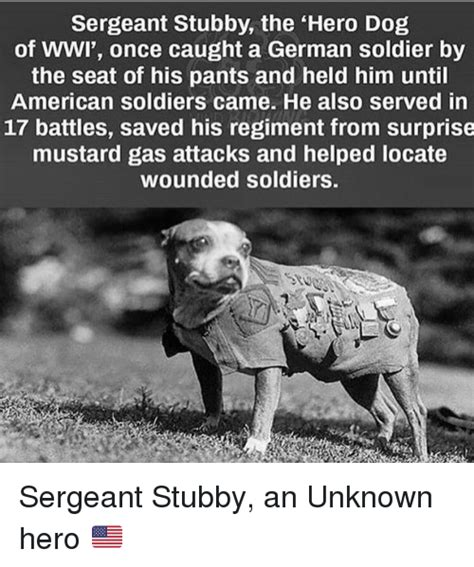 Sergeant Stubby German Search Soldiers Memes On Me Me