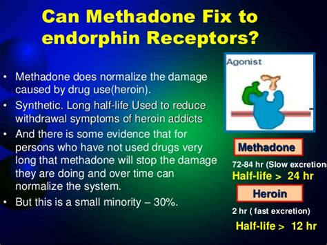 How To Detox From Methadone Fast by Presentation On Endorphin Hormone