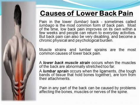 lower back pain in bed m 225 s de 25 ideas incre 237 bles sobre lumbalgia sintomas en