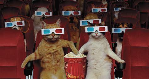 les choses  seules les employees dun cinema peuvent