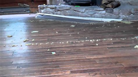 removing carpet hardwood floors