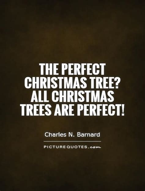 the perfect christmas tree all christmas trees are