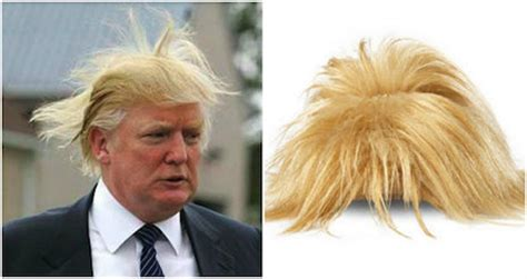 What Type Of Shoo Is For Hair by Shoes That Look Like Donald S Combover
