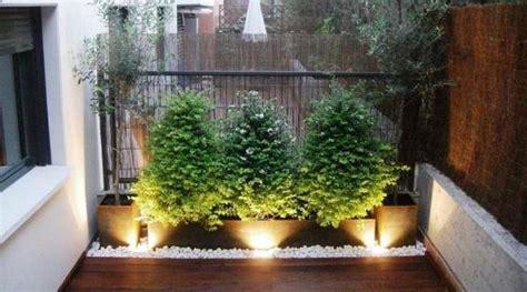 fotos patios interiores ideas para decorar patios interiores