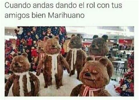 grifo weed grifos weed home facebook