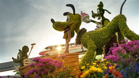 Garden And Gun Best Of The South 2016 Topiary Displays Gardens At The 2016 Epcot International