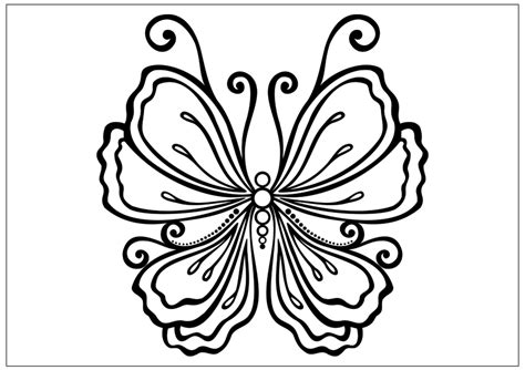 beautiful coloring pages of butterflies beautiful butterfly drawing az coloring pages