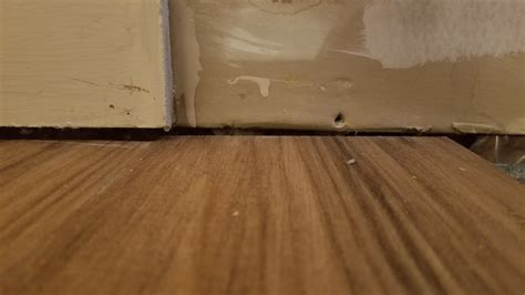1 drywall floor gap flooring what should i do about a gap the