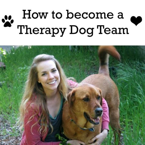 how to register your as a therapy 17 best ideas about service on near me