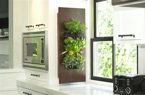 indoor herb garden wall full service indoor gardening