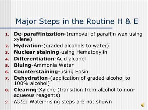 h e staining protocol for frozen sections routine h e