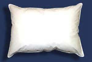 Where Do The Feathers In Pillows Come From by Kraft Pillow Service Pillow Renovation Cleaning Pillow