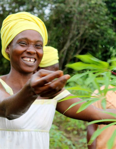 Student Farmers in Liberia Get Back to the Soil and Into